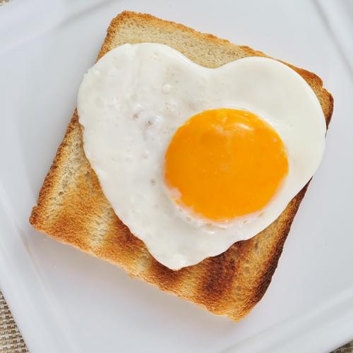 egg 102019066