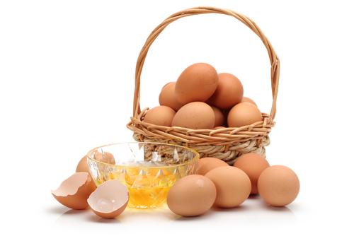 egg basket 117004567