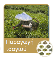 teaproduction