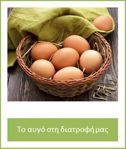 egg monography