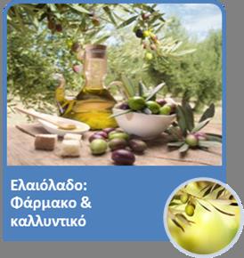 olive03