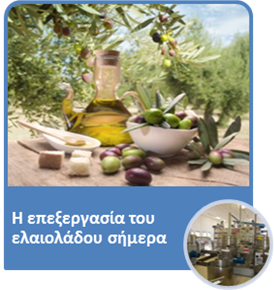 olive07