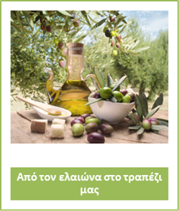 olive monography