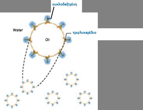 cyclodextrine2