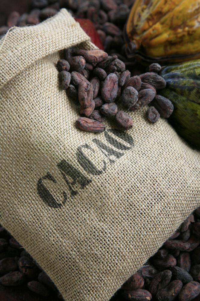 cocoabeans inbag 84587542