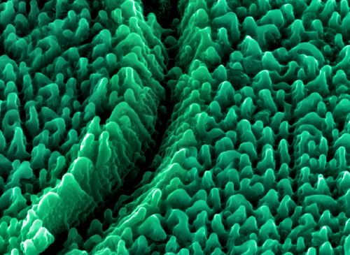 nanostructures 84338302
