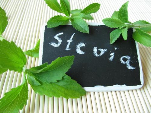 stevia 59049229