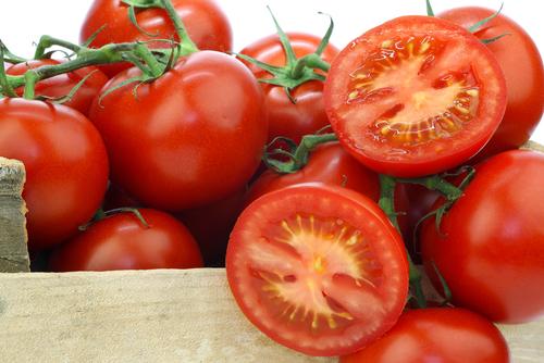 tomatoes 81110401