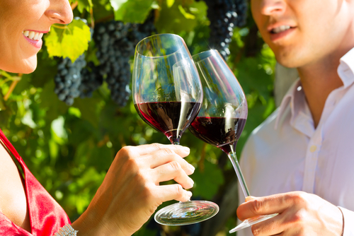 drinking wine 115573015