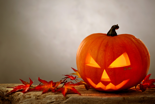 halloween 113293567