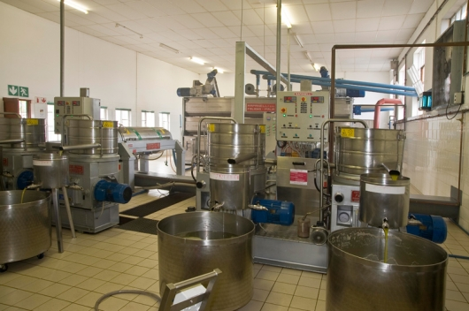 olive-oil-extraction-systems