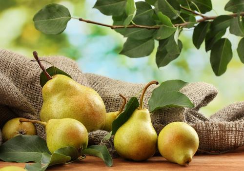 pears 109936643
