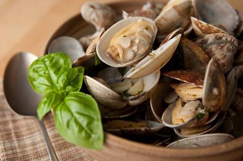 shellfish 80219779