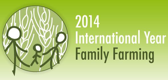 logo iyff3